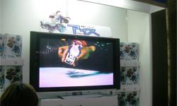東京ゲームショウ2008 ARis