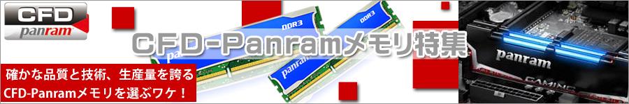 CFD-Panramメモリ特集