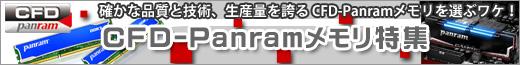確かな品質と技術を誇る CFD-Panramメモリ特集