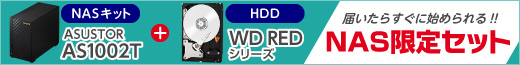 ASUSTOR AS1002T+WD Redシリーズ 限定セット