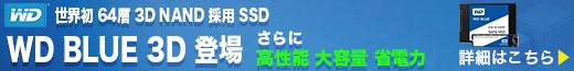 WD SSD Blue 3D特集