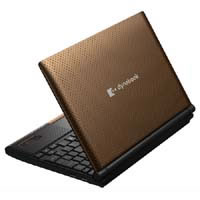 【クリックで詳細表示】dynabook N300 N300/02AC PN30002AMVC (カカオブラウン) 《送料無料》